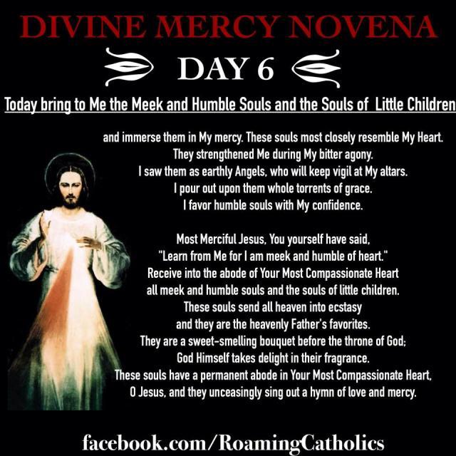 Divine Mercy Novena 6