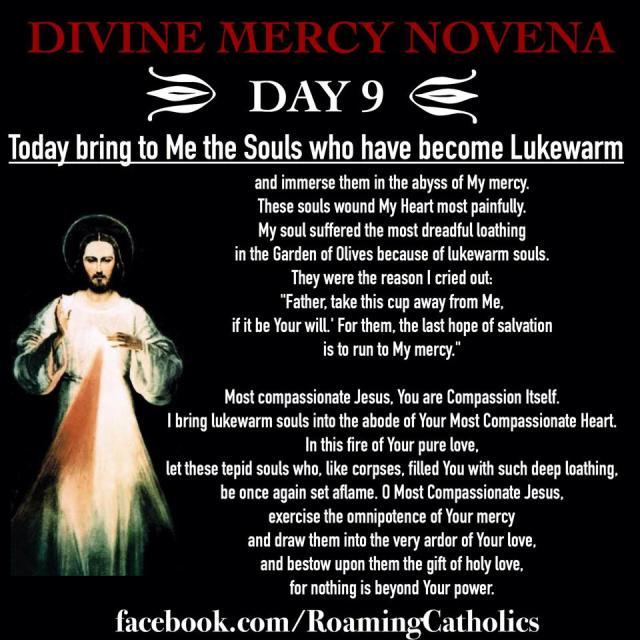 Divine Mercy Novena Day 9