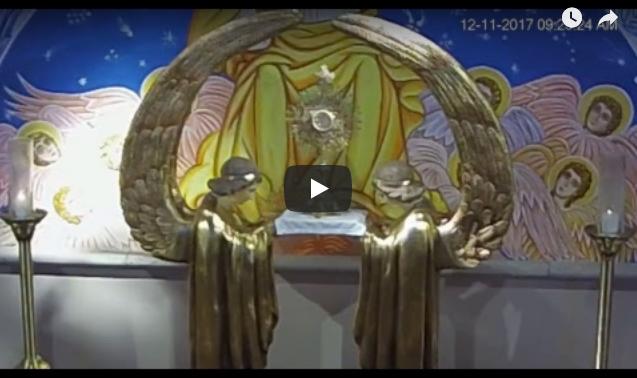 St. Ann Eucharistic Adoration