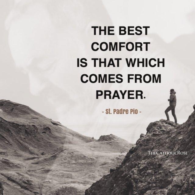 the best comfort.jpg