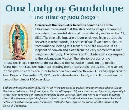 Guadalupe 11