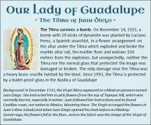 Guadalupe 12
