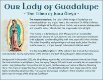 Guadalupe 14