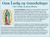 Guadalupe 15