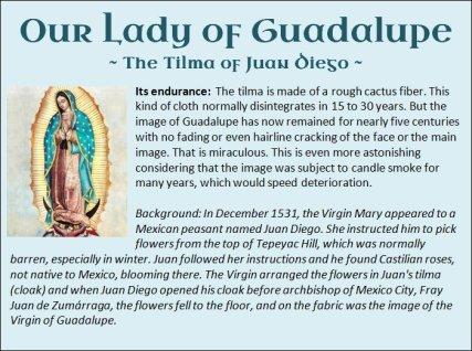 Guadalupe 16
