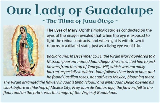 Guadalupe 17