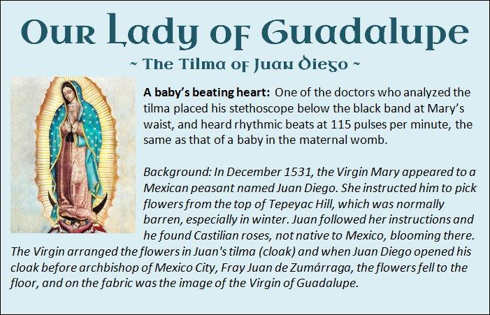 Guadalupe 18.jpg