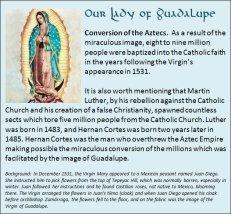 Guadalupe 3