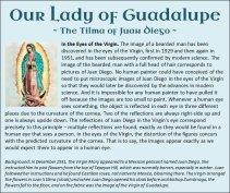 Guadalupe 9