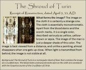 shroud 11