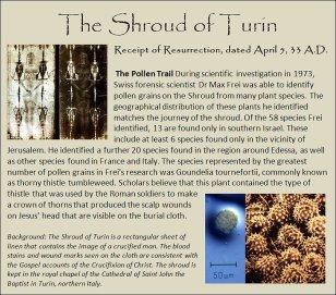 shroud 2