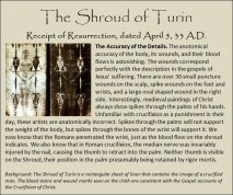 shroud 7