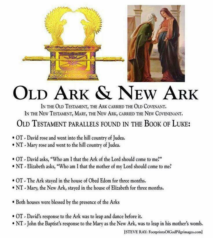 Old Ark and New Ark.jpg