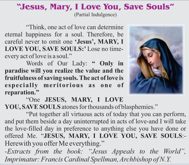 Jesus, Mary I love you, save souls.jpg