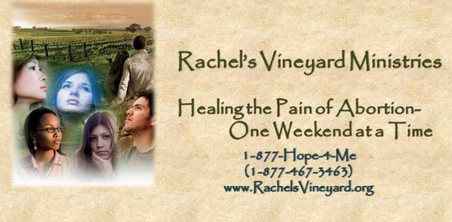Rachel's Vineyard.jpg