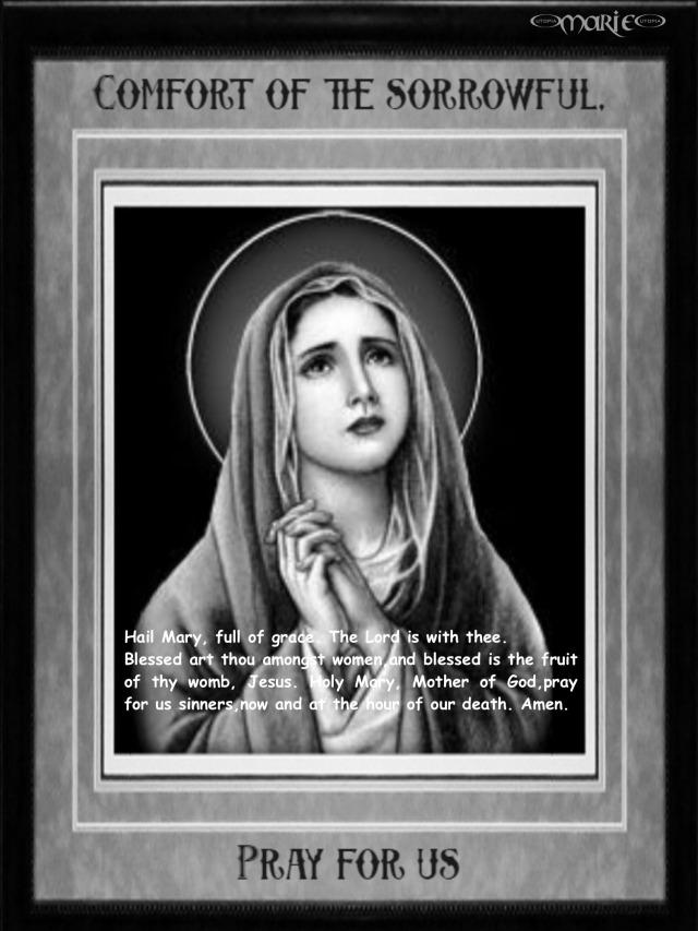 Hail Mary Comfort of the Sorrowful.jpg