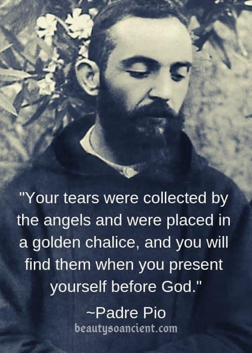 St. Pio - your tears collected.jpg
