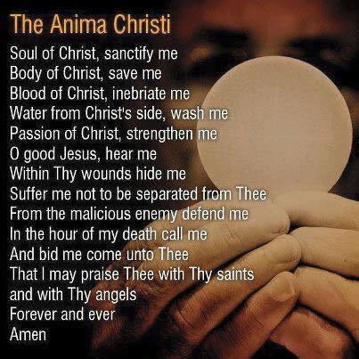 anima-christi